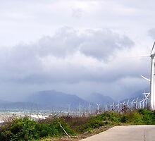 Bangui Windmills, Pagudpud, Ilocos Norte by Cai Palmiter