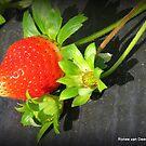 The fruit of love by Ronee van Deemter