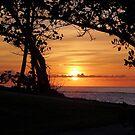John Smith's Bay Sunrise, Bermuda by triciamary