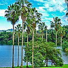 Waokele Pond Palms and Sky  by Robert Meyers-Lussier