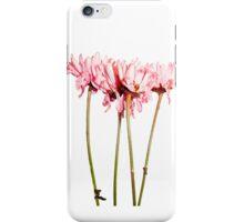 Pink. iPhone Case/Skin