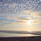 Beach Glory by Rosalee Lustig