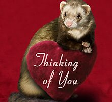Thinking of You Ferret by jkartlife