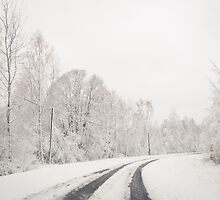 Winter wonderland in Latvia by Anete Bauere