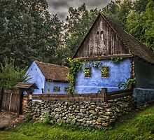 Old house by Dobromir Dobrinov