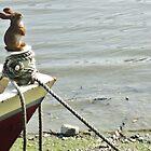 rabbit by Bridget Rust