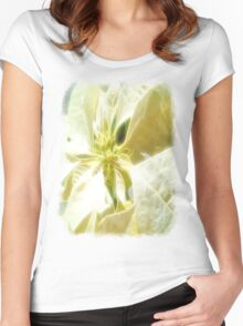 Pale Yellow Poinsettia 1 Angelic Women's Fitted Scoop T-Shirt