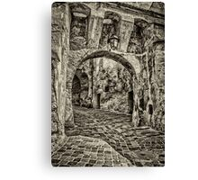 Old street Canvas Print