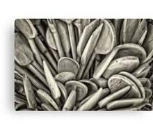 Wooden spoon Canvas Print