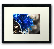 Blue Star Of India (Pentagonite) Framed Print