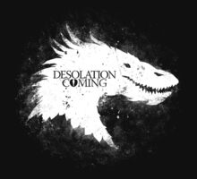 Desolation is Coming Kids Clothes