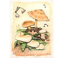 Mushroom Music Photographic Print