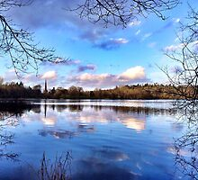 Hillsborough Park Lake by Ludwig Wagner