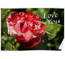 Love you rose Poster