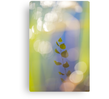 Birch leaves reflected in a lake Canvas Print