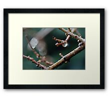Ok...we've really had enough of all the wet stuff now... Framed Print