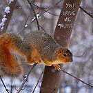 You Drive Me NUTS!! by Grinch/R. Pross