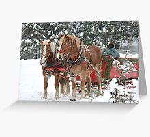 Sleigh Ride Anyone! Greeting Card
