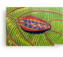 398 - MULTICOLOURED COCKROACH - DAVE EDWARDS - COLOURED PENCILS - 2014 Canvas Print