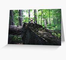 seeking forests Greeting Card