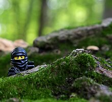 Ninja - Sneaking in the Forest by emmkaycee