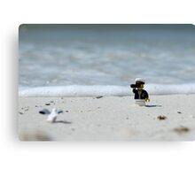 Sea Captain - Bird Watching at the Beach Canvas Print