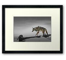 Wild Thang Framed Print