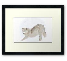 Arctic Yoga Stretch... Framed Print
