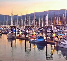 The boats of John Wayne Marina by Moonamie