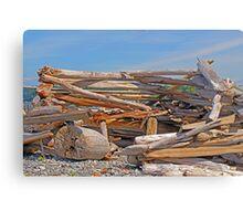 Beach Abode Canvas Print