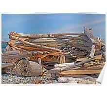 Beach Abode Poster