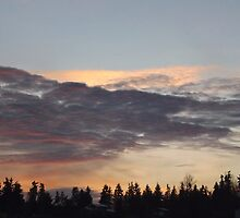 Sequim Sunset  by Moonamie
