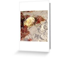 Ocean Rose  Greeting Card