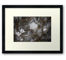 Gentle snowfall #2 Framed Print