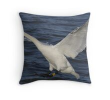 Cleared to Land 2 Throw Pillow