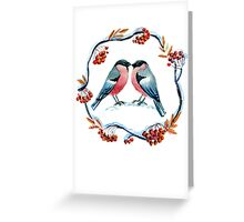Bullfinch on mountain ash Greeting Card