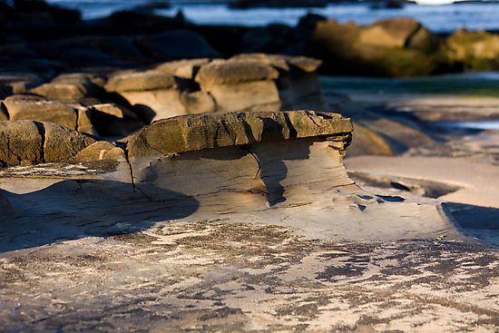 Sculpted By Wind And Water - Beachcomber Series by reflector