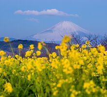 Mt Fuji by GVarney