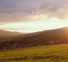 Landscape filled with golden light at sunset by intensivelight