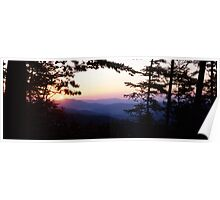 Dark forest and sunset Poster