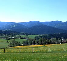 Flowering meadows and rolling hills in spring by intensivelight