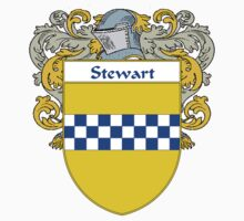 Stewart Coat of Arms / Stewart Family Crest by William Martin