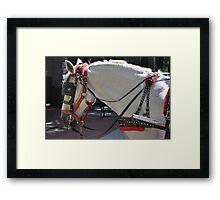 Boston 3 Framed Print