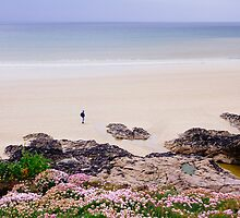 Polzeath Beach (June) by cornishwhippet