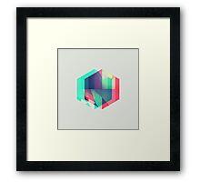 hyx^gyn Framed Print