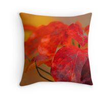 Beauty Of The Dogwoods Throw Pillow