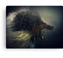 Lycanthropy Canvas Print