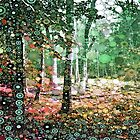 :: Walk in the Woods :: by Gale Storm Artworks