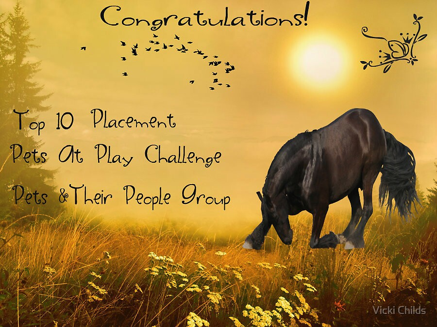 Top 10 Placement Banner Pets and Their People (See Note Below) by Vicki Childs