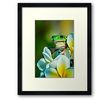 A Higher Perspective... Framed Print
